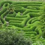 Labyrinthe...